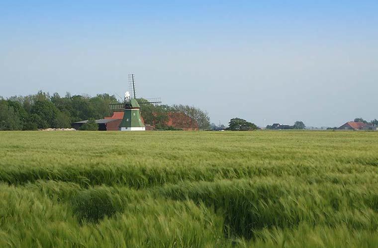 Mühle in Altfunnixsiel